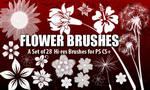 Flower Brushes 4 Photoshop CS+