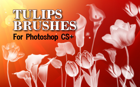 Tulip Flowers- PS Brushes by fiftyfivepixels