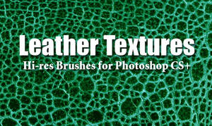 10 Leather Textures PS Brushes