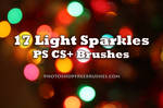 17 Sparkle of Lights PS Brush