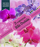 21 Orchid Flower Brushes for Photoshop by fiftyfivepixels