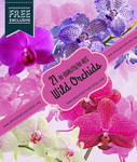 21 Orchid Flower Brushes for Photoshop