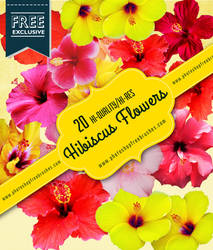 20 Free High-Res Hibiscus Realistic Flowers by fiftyfivepixels