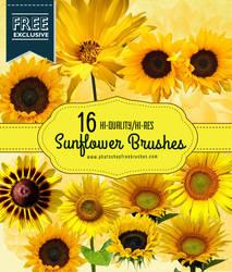 16 Realistic Sunflower Photoshop Brushes