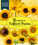 16 Realistic Sunflower Photoshop Brushes