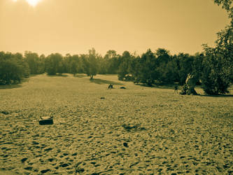 Dry Paradise