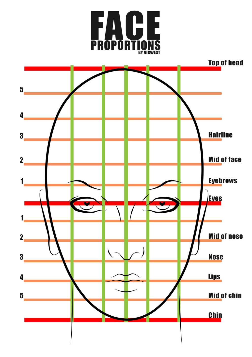 Displaying 20> Images For - Human Nose Types Chart...