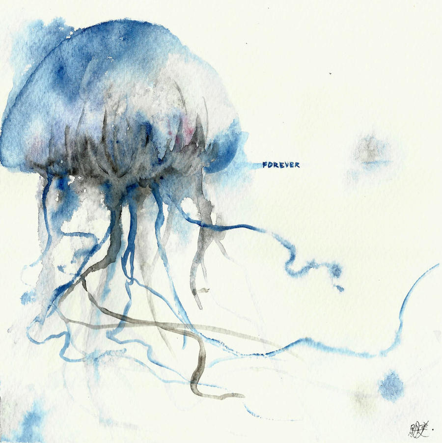 jellyfish are forever by takumaki