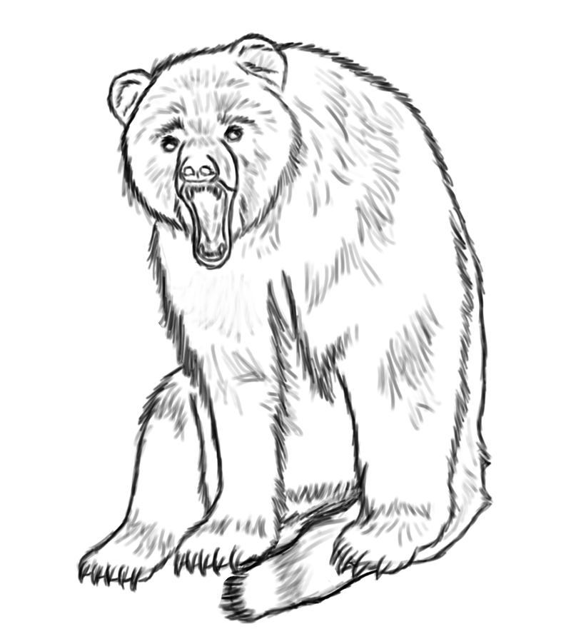 A Bear Tattoo Design by *Silverst on deviantART