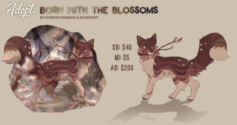 COLLAB ADOPT: Born With the Blossoms