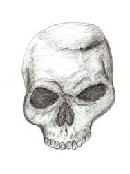 Skull Attempt #1