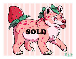 Offer to Adopt - Strawberry pup -CLOSED-
