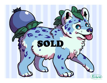 Offer to adopt - Blueberry Pup -CLOSED-