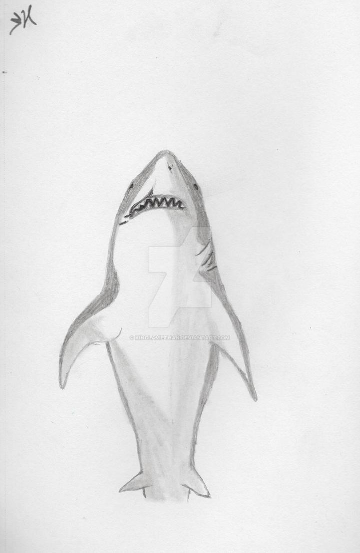 Shark by Kinglaviethan