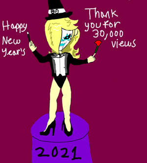 Happy New Year and thank you for 30,000 page views