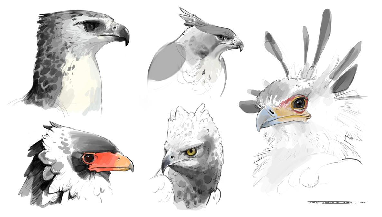 Bird Practice by Keltainen
