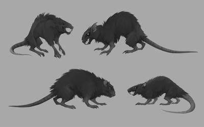 Rat Concept_Mandragora