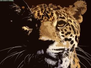 XxpatojrxX's Profile Picture
