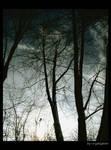 through the dusky place...