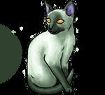 Siamese shinycat : green