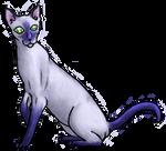 Siamese shinycat : blue