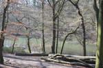 Circle, Circle, Siamese-Arrows and a Lake