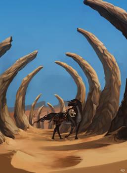 YHH: Desert winds