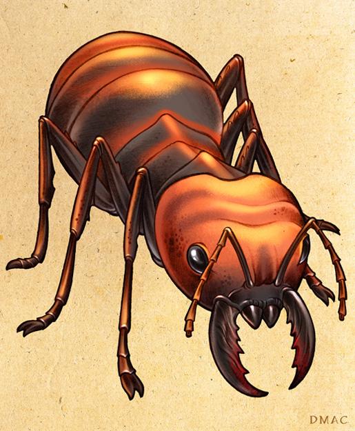 Giant Ant by D-MAC on DeviantArt: d-mac.deviantart.com/art/Giant-Ant-144496852