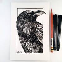 Inktober Day 5 - Raven