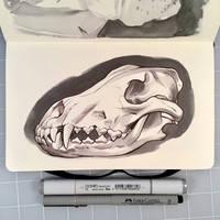 Inktober Day 25 - WOLF SKULL by D-MAC