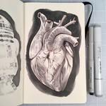Inktober Day 28 - HEART
