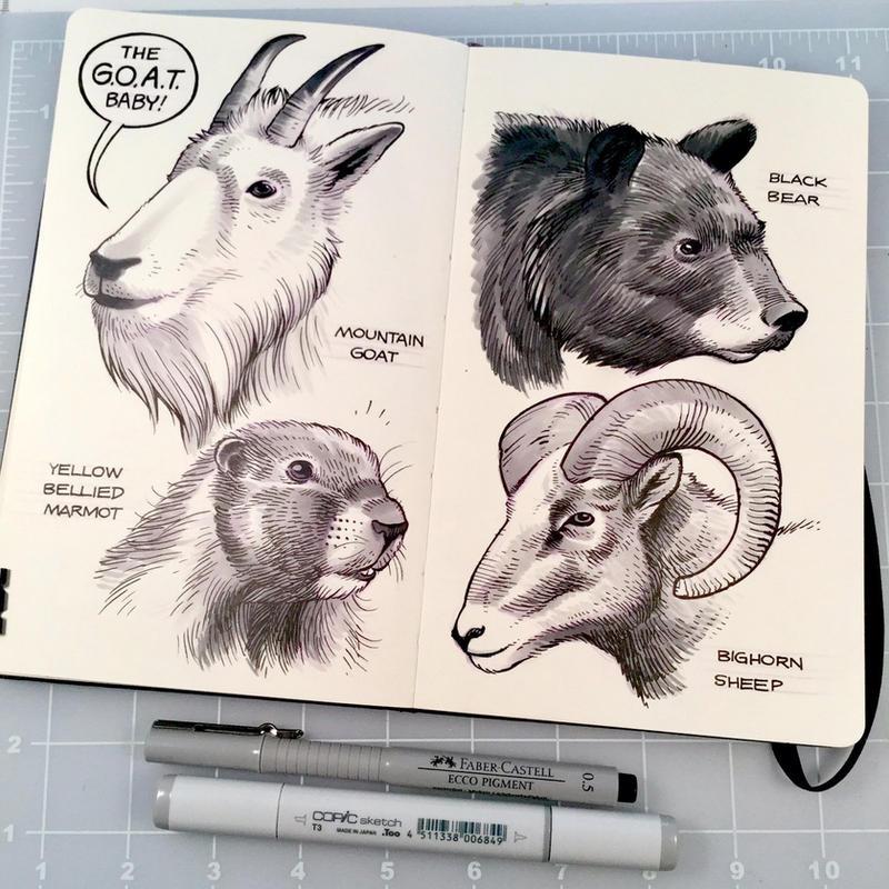Jasper Wildlife by D-MAC