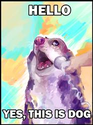YES, THIS IS DOG by Nekoshiba