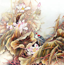 Lotusflower Explore Lotusflower On Deviantart