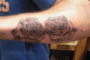 Roses by MoRobles