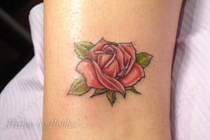 Rose by MoRobles