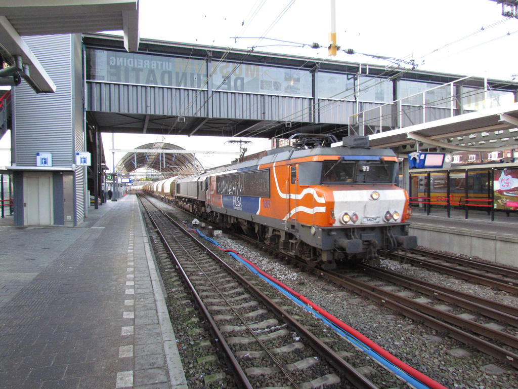 HRTS dolime through zwolle by damenster