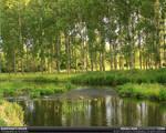 Maryam's River