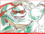 TMNT-Raphael-Enjoy Fighting