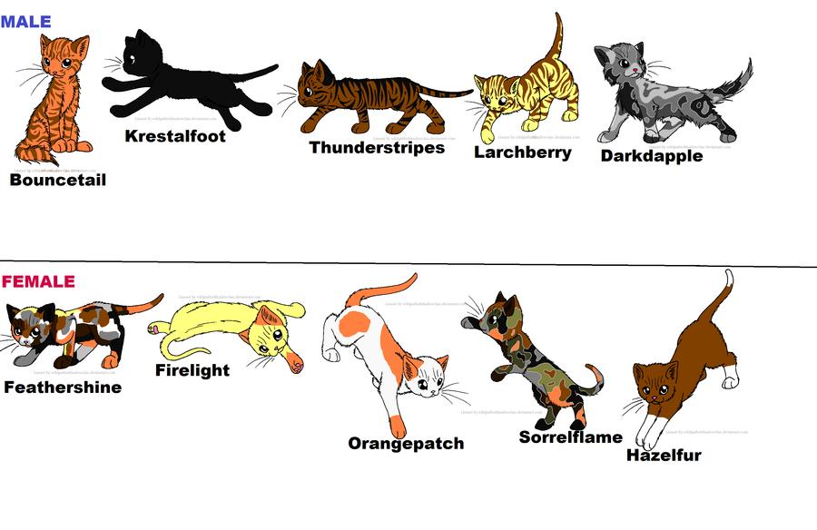 Bossy Cat Names