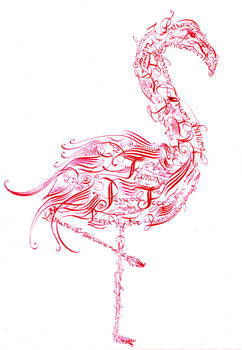 Flamingo caligrafico