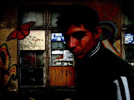 Solitary Butterfly - Borboleta Solitaria