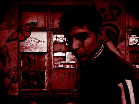Solitary Butterfly - Borboleta Solitaria 'red