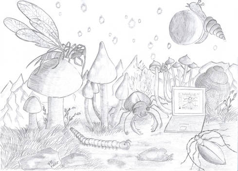 Landscape with Mushrooms, Laptop and Invertebrates