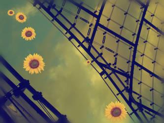 'follow the sun by TheWhiteNight
