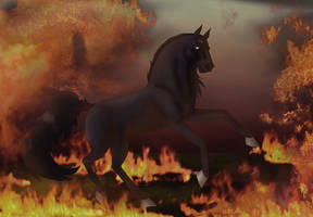 Born In flames by Jatatorr