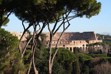 Colloseum seen from Palatine hill.