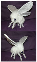 Tommy the Poodle Moth - Warding