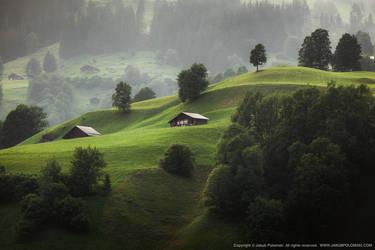 Helvetia by polomski