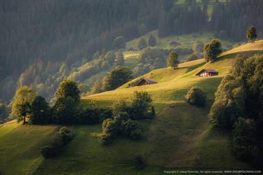 Grindelwald by polomski